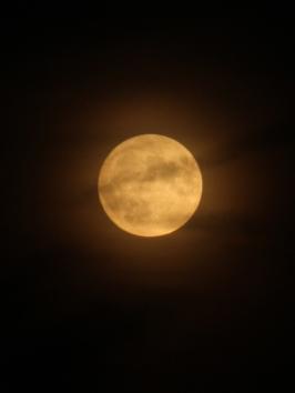 Sturgeon Moon